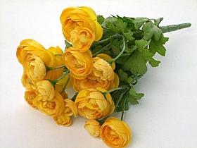 Ranunculus 23 cm HO galben