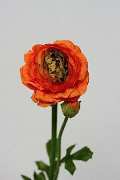 Ranunculus D7xH45 cm HO portocaliu