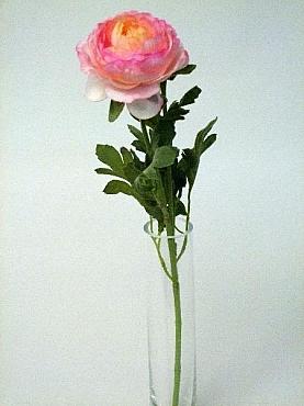 Ranunculus D8xH40 cm HO roz