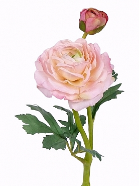 Ranunculus De Luxe 35 cm roz 87255