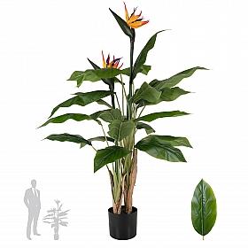 Strelitzia Reginae artificiala H120cm Pasarea paradisului - Floarea macara