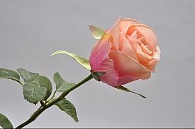 Tradandafir D8x6xH39 cm roz - somon DE