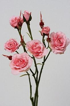 Trandafir 45 cm HO roz