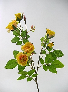 Trandafir 65 cm HOB galben