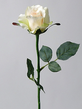 Trandafir Alice 58 cm alb