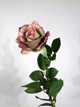 Trandafir Alice D8x6xH65 cm HO mov