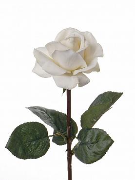 Trandafir Caroline 35 cm alb