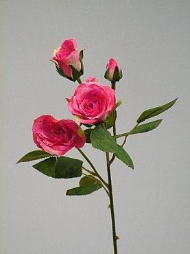Trandafir D3x2xH60 cm HOB roz magenta