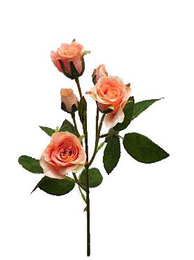 Trandafir D3xH40 cm HOB roz - somon