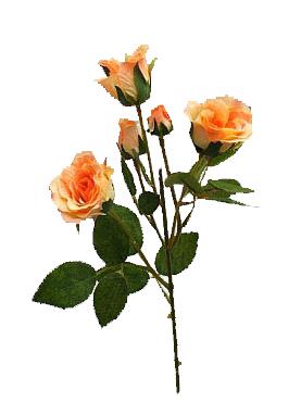 Trandafir D5x4xH40 cm HO galben - piersica