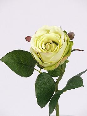 Trandafir Jessica 32 cm verde