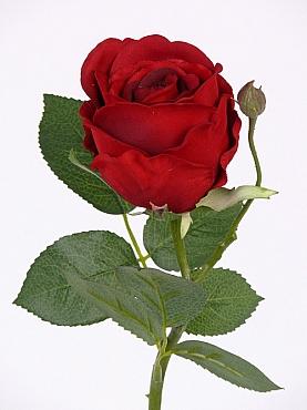 Trandafir Jessica D6xH32 cm rosu