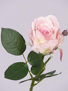 Trandafir Jessica D7x7xH32 cm roz