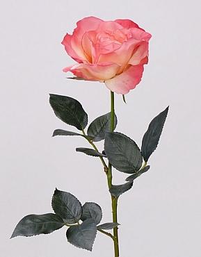Trandafir Joey D10x6xH70 cm roz
