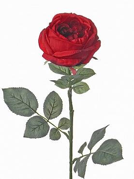 Trandafir Luna 73 cm rosu