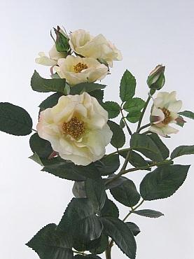 Trandafir Mandy 65 cm HO alb