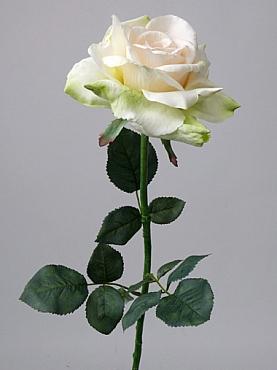 Trandafir Quiannie D15x7xH67 cm alb