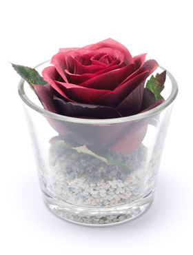 Trandafir Simone in vas de sticla D10 cm rosu