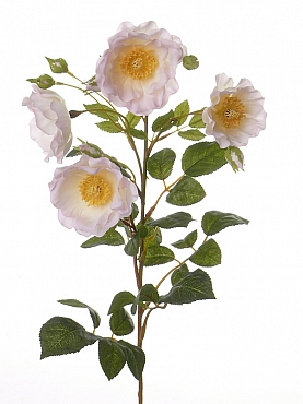 Trandafir tros D8x6xH56 cm roz