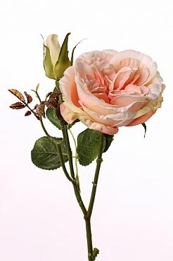 Trandafir tros Little Joy D10x5xH38 cm roz - somon