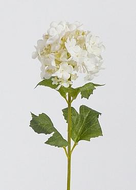 Viburnum D7x5xH35 cm alb